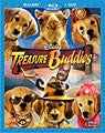 Treasure Buddies (Blu-ray/DVD)