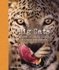 Big Cats: In Search of Lions, Leopards, Cheetahs, and Tigers (Hardcover)