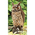 Dalen 16-inch Molded Owl Painted