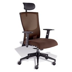 J & K Mesh Ergonomic Highback Office Chair