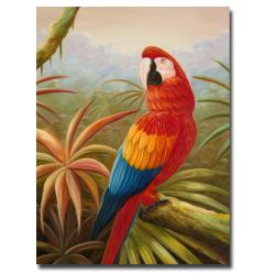 Rio 'Amazon Rain Forest' Canvas Art