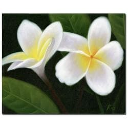Hawaiian Lei Flowers' Canvas Art