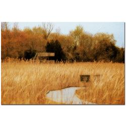 Lois Bryan 'The Marsh in April' Canvas Art