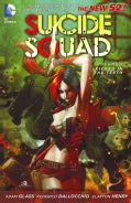 Suicide Squad 1: Kicked in the Teeth (Paperback)