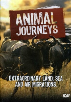 Animal Journeys (DVD)
