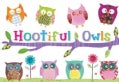 Hootiful Owls Stationery Box