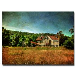 Lois Bryan 'Old Barn in Golden Light' Canvas Art