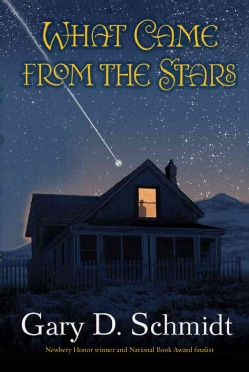 What Came from the Stars (Hardcover)