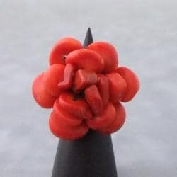 Red Coral Blooming Rose Cotton Rope Ring (Thailand)