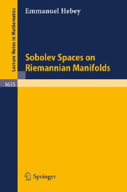 Sobolev Spaces on Riemannian Manifolds (Paperback)