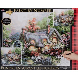 Paint By Number Kit - Cottage Mill
