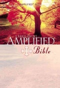 The Amplified Bible (Hardcover)