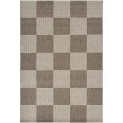 Woven Clio Area Indoor/Outdoor Checkerboard Rug (7'10 x 11'1)