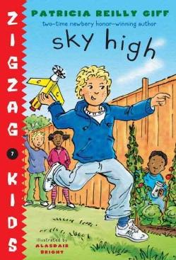 Sky High (Hardcover)