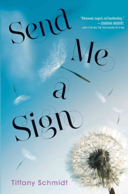 Send Me a Sign (Hardcover)