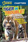Tiger in Trouble!: And More True Stories of Amazing Animal Rescues (Hardcover)