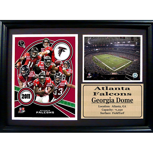 2011 Atlanta Falcons 12 X 18 Photo Stat Frame