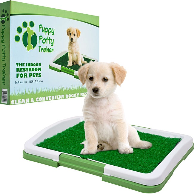 PAW Green/White Plastic Odor-resistant Three-layer Puppy Potty Trainer