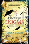 The Blackhope Enigma (Paperback)
