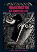 Frankenstein by Mary Shelley: A Dark Graphic Novel (Hardcover)