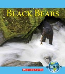 Black Bears (Hardcover)