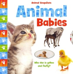 Animal Babies (Board book)