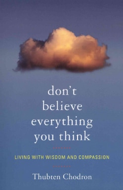 Don't Believe Everything You Think: Living With Wisdom and Compassion (Paperback)
