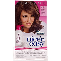 Clairol Nice'n Easy Foam #6.5G Lightest Golden Brown Hair Color (Pack of 4)