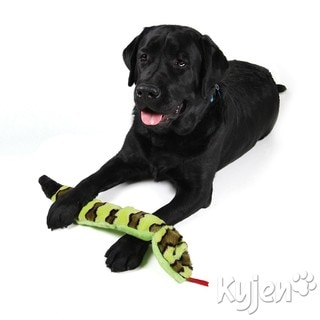 Kyjen Company Invincibles Squeak Snake and Gecko Bundle Dog Toys (Set of 2)