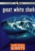 Inside Nature's Giants: Great White Shark (DVD)