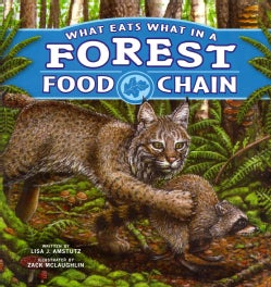 What Eats What in a Forest Food Chain (Paperback)