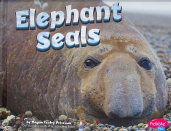 Elephant Seals (Hardcover)