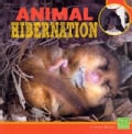Animal Hibernation (Paperback)
