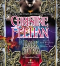 Dark Storm: A Carpathian Novel (CD-Audio)