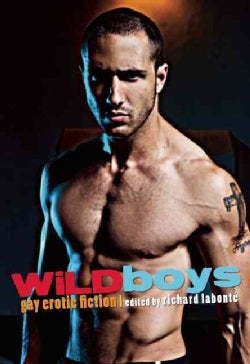 Wild Boys: Gay Erotic Fiction (Paperback)
