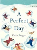 A Perfect Day (Hardcover)