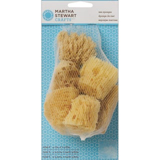 Martha Stewart Sea Sponge Cubes (Pack of 6)