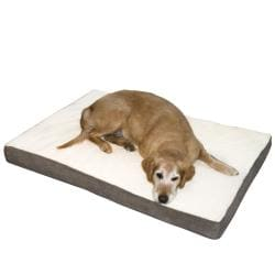Ozzie Small Mocha Orthopedic Dog Bed