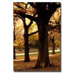 Ariana Moshayedi 'Park' Canvas Art