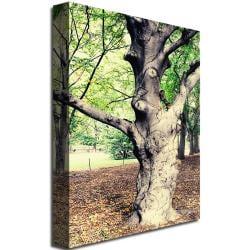 Ariane Moshayedi 'Tree' Canvas Art