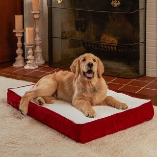 Happy Hounds Ozzie Deep Red Orthopedic Dog Bed