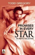 Promises in Every Star: An Erotic Collection (Paperback)