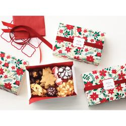 Martha Stewart Woodland Poinsettia Matchbox Treat Boxes (Pack of 6)