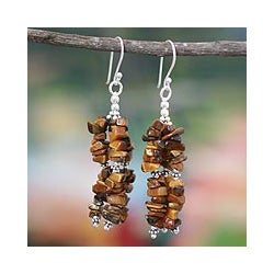 Sterling Silver Handcrafted 'Rejoice' Tiger's Eye Earrings (India)