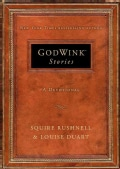 Godwink Stories: A Devotional (Hardcover)