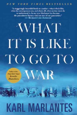 What It Is Like to Go to War (Paperback)