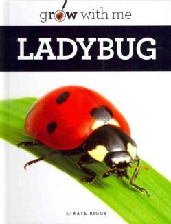 Ladybug (Hardcover)