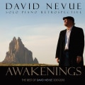 DAVID NEVUE - AWAKENINGS: THE BEST OF DAVID NEVUE (2001-2010)