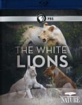 Nature: The White Lions (Blu-ray Disc)