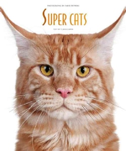 Super Cats (Hardcover)